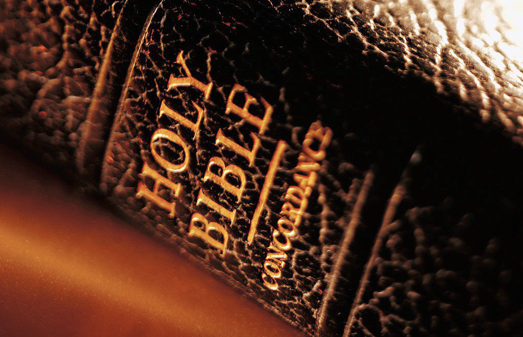 leather Bible & concordance