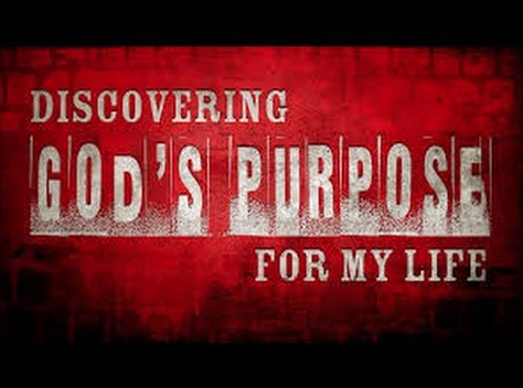God's Purpose